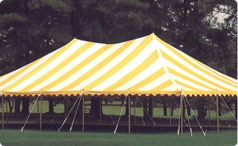 Where to find CANOPY, 20  X 30  YELLOW in Hagerstown