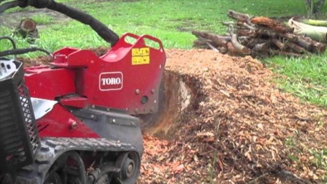 Grinder Stump 26 Hp Hydraulic Rentals Hagerstown Md Where