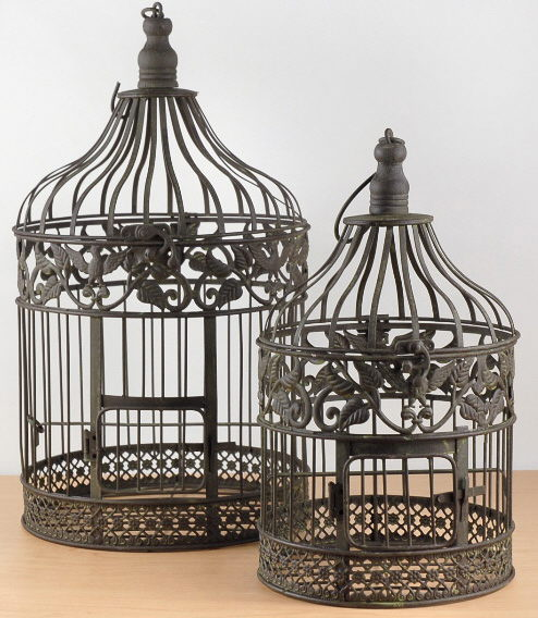 Where to find BIRD CAGE SET  2  BROWN in Hagerstown