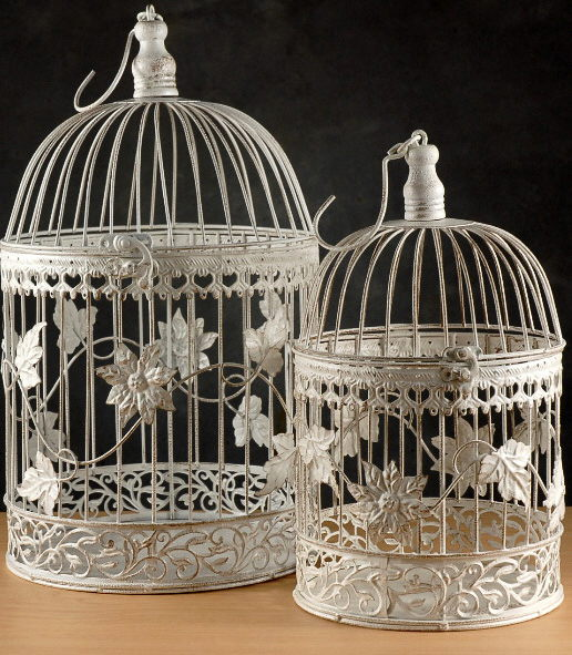 Where to find BIRD CAGE SET,  2  WHITE in Hagerstown