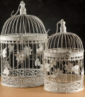 Where to rent BIRD CAGE SET,  2  WHITE in Hagerstown MD